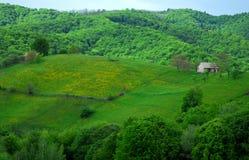 Koe en huis op mooie heuvels stock foto beeld 40760733 - Mooie huis foto ...