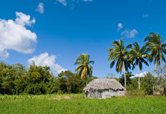 Huis in tropisch landschap Royalty-vrije Stock Afbeeldingen
