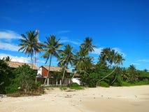 Huis tussen palmen bij het strand Stock Foto