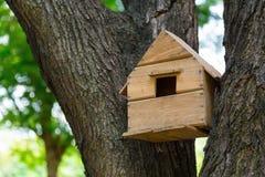 Huis van de vogels in de bomen stock fotografie