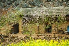 Huis van etnische minderheden stock fotografie