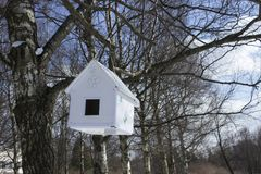Huis-voeder het hangen van een boom stock foto
