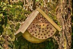 Huis voor bijen Stock Afbeeldingen