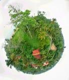 Huis weinig planeet stock afbeelding