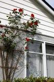 Huis zoet huis Stock Afbeelding