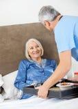Huisbewaarder Dienend Ontbijt aan Gelukkige Hogere Vrouw Stock Afbeelding