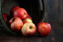 Huiselijk Vathoogtepunt van Rode Appelen op Houten Grunge-Achtergrond Stock Foto's