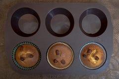 Huishand - gemaakte muffins, de koekjes van Madeleine, in bakselschotel Stock Foto's
