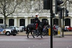 Huishoudencavalerie Royalty-vrije Stock Afbeeldingen