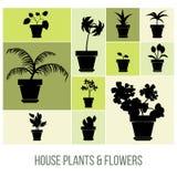 Huisinstallaties en Bloemen in Pottensilhouetten, Vectorillustratie Royalty-vrije Stock Afbeeldingen