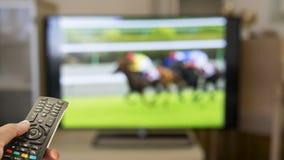 Huispaardenrennen het letten op op TV royalty-vrije stock foto's