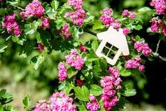 Huissymbool Stock Foto's