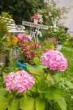Huistuin in bloesem Stock Afbeeldingen