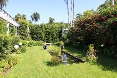 Kleine vijver in de tuin stock afbeelding afbeelding for Kleine tuinvijver