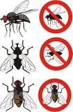 Huisvlieg - waarschuwingsseinen Stock Foto
