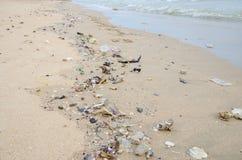 Huisvuil op een strand, milieuvervuiling Stock Afbeelding