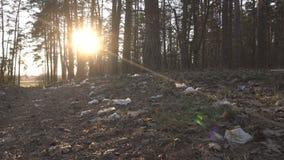 Huisvuil op het gras in het bos op de achtergrond van de weg en de zonsondergang, ecologie, milieuvervuiling door de mens stock footage