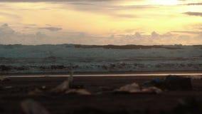 Huisvuil op het strand van Bali Kuta, mensengangen voorbij stock video
