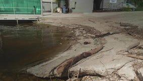 Huisvuil op kust van rivier in jachthaven stock video