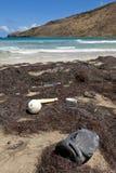Huisvuil op strand Royalty-vrije Stock Foto