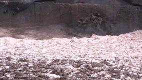 Huisvuil, vuil, wat het milieu vernietigen stock footage