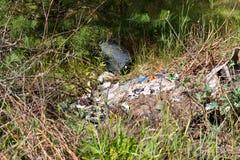 Huisvuilstortplaats in bos Milieukwestie, verontreiniging van su stock afbeeldingen
