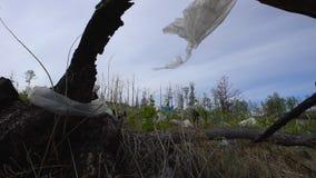 Huisvuilstortplaats in het bos, milieuvervuiling, bos, bomen stock video