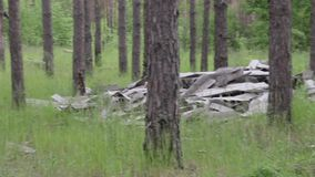 Huisvuilstortplaats in het bos, milieuvervuiling, zonnige de zomerdag, bos, mooie groene bomen stock footage