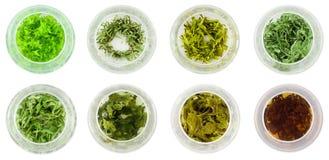 Huit bols de thé vert Images stock