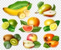 Huit fruits dans le style réaliste avec des feuilles illustration libre de droits