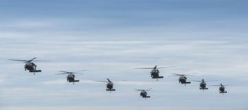 Huit hélicoptères noirs de faucon Photographie stock