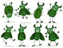 Huit insectes verts Photographie stock libre de droits