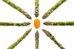 Huit lances d'asperge visant un kumquat Images libres de droits