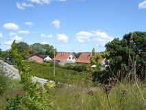 huizen in Aalborg in Denemarken royalty-vrije stock foto's