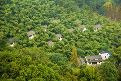 Huizen in bos Royalty-vrije Stock Foto