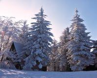 Huizen die met sneeuw worden behandeld Stock Afbeelding