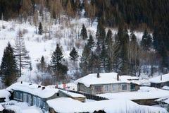 Huizen die in sneeuw worden behandeld Stock Foto's