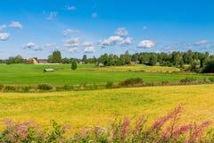 Huizen in een landelijk landschap stock foto