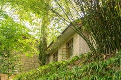 Huizen en bamboebosjes in de voorsteden stock foto's