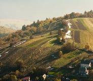 Huizen en bomen op de heuvel Stock Afbeelding