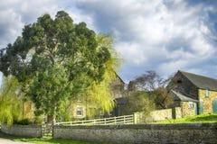 Huizen en boom in dorp in de vroege lente Stock Afbeeldingen