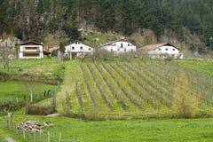 Huizen en landbouwbedrijven in het Baskische land royalty-vrije stock afbeelding