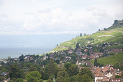 Huizen in het midden van Wijngaarden naast Meer Genève Stock Foto