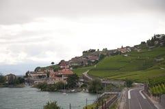 Huizen in het midden van wijngaarden op een bewolkte dag Stock Afbeelding