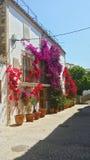 Huizen met bloemen in Ibiza, Spanje worden verfraaid dat stock fotografie