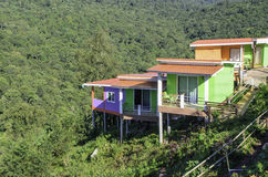 Huizen met bos Royalty-vrije Stock Afbeelding