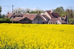 Huizen onder de bloemen, de Loire Stock Afbeelding