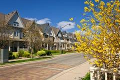 Huizen op woonstraat in de lente Stock Afbeeldingen