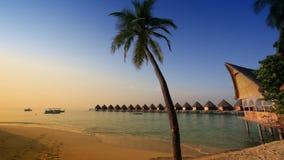 Huizen over het transparante stille zeewater en een palm maldives stock videobeelden