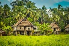 Huizen in Palembe stock foto's